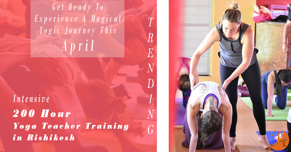 200 Hour  Yoga Teacher Training in Rishikesh RYS200 (April)