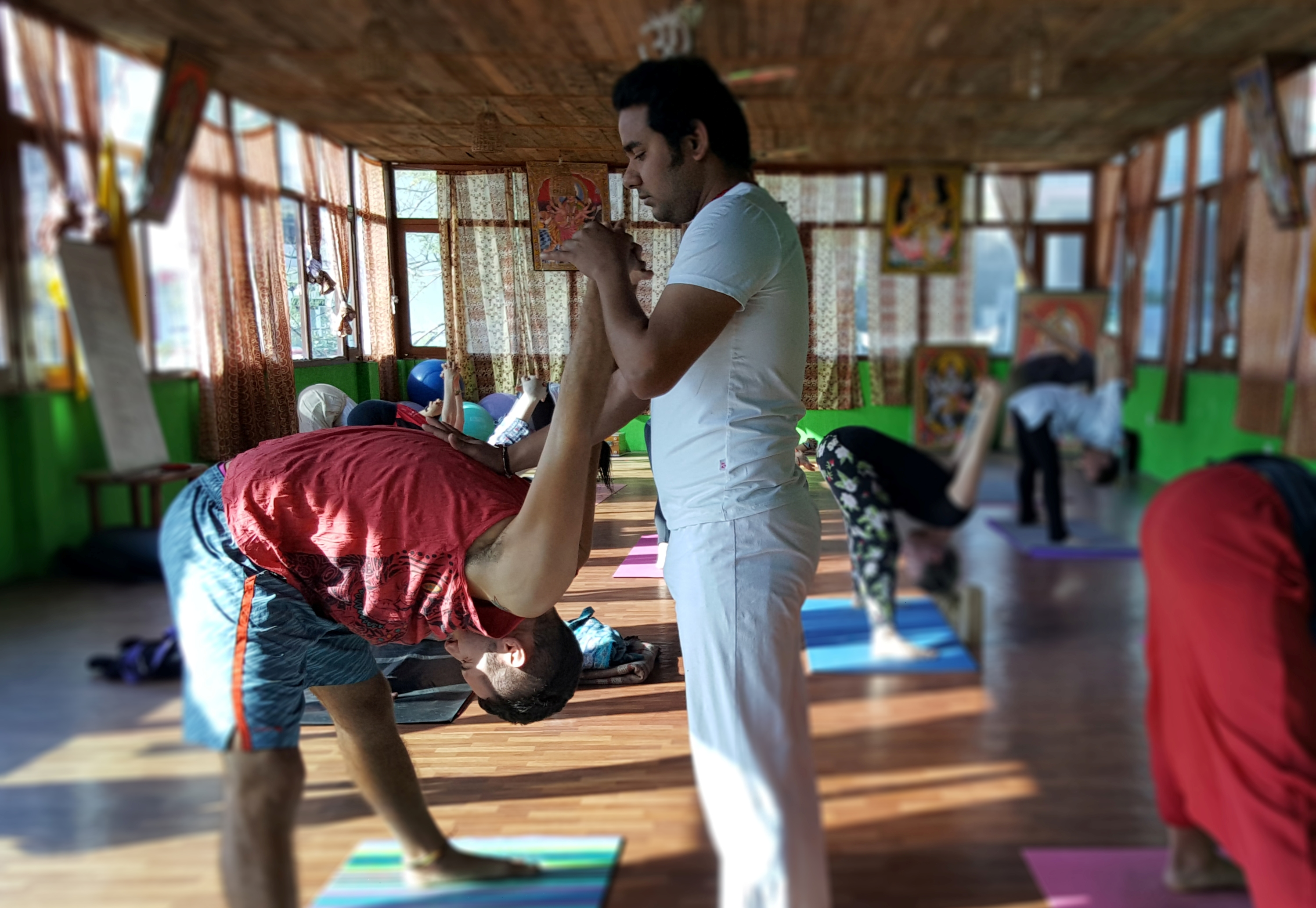 200 Hour Yoga Teacher Training - May 2019