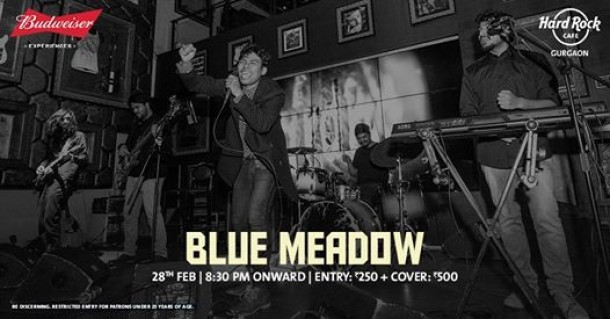 Blue Meadow - Thursday Live!